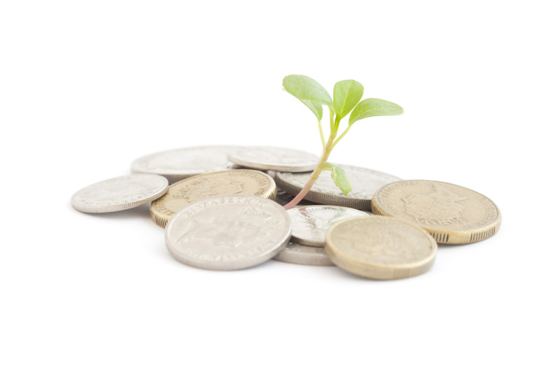 portfolio growth concept: a seedling sprouting from a pile of coins
